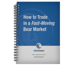 How-to-Trade-in-a-Fast-Moving-Bear-Market-2009-review